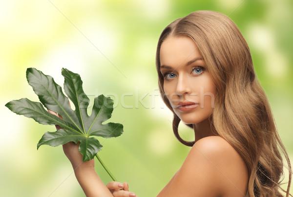 Mujer hoja verde Foto blanco salud verde Foto stock © dolgachov