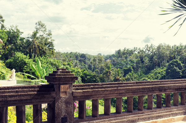 Ver varanda tropical mata hotel viajar Foto stock © dolgachov