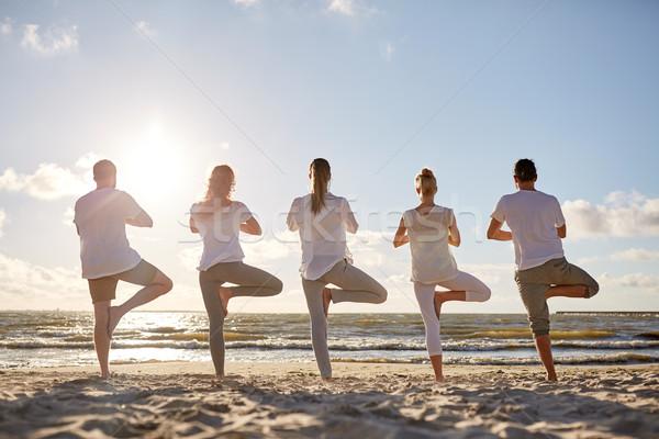Сток-фото: группа · людей · йога · дерево · создают · пляж