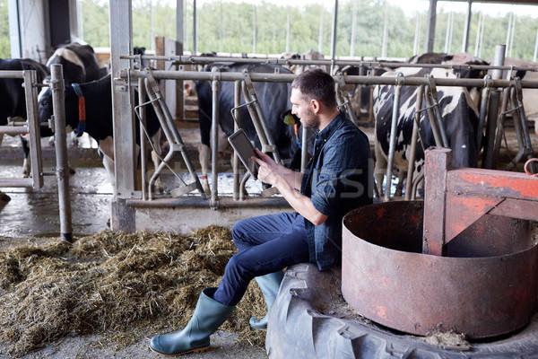 Fiatalember táblagép tehenek tejgazdaság farm mezőgazdaság Stock fotó © dolgachov