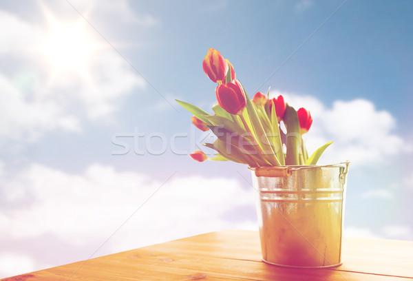 Lâle çiçekler kalay kova tablo Stok fotoğraf © dolgachov