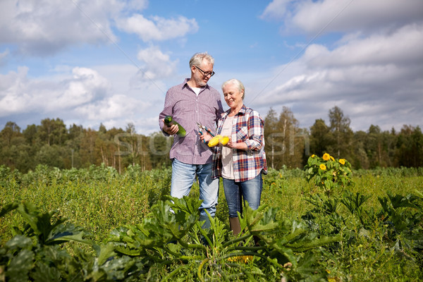 Heureux couple de personnes âgées squash jardin lit ferme Photo stock © dolgachov