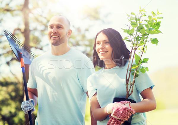 önkéntes pár fák gereblye park önkéntesség Stock fotó © dolgachov