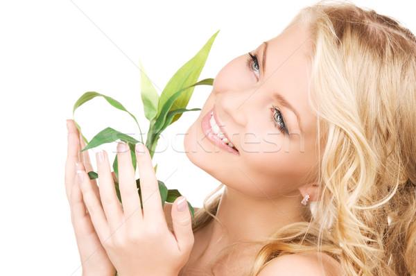 Nő hajtás fehér kép egészség zöld Stock fotó © dolgachov