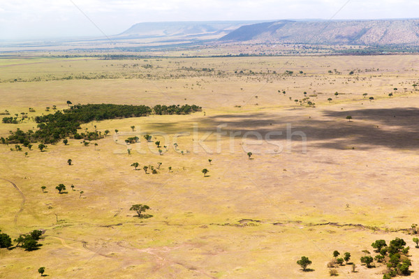 view to maasai mara savannah landscape in africa Stock photo © dolgachov