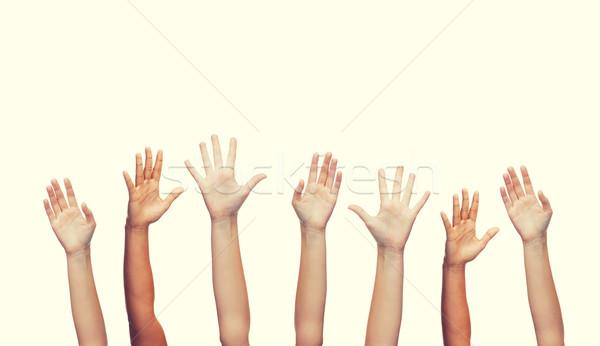 Humanos manos gesto partes del cuerpo hombre Foto stock © dolgachov