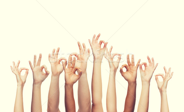 Ludzi ręce podpisania gest Zdjęcia stock © dolgachov