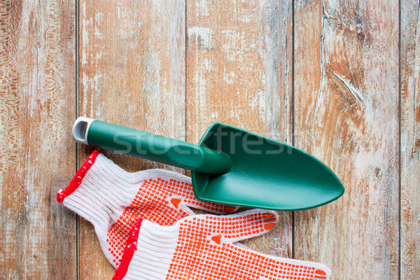 close up of trowel and garden gloves Stock photo © dolgachov