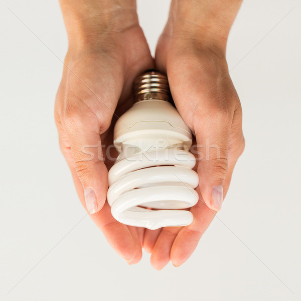 close up of hands holding energy saving lightbulb Stock photo © dolgachov