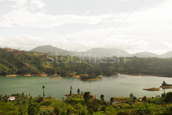Kilátás tó folyó föld dombok Sri Lanka Stock fotó © dolgachov