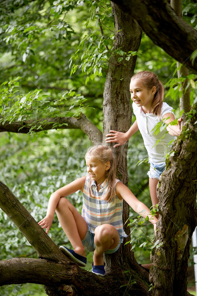 two happy girls climbing up tree in summer park Stock photo © dolgachov