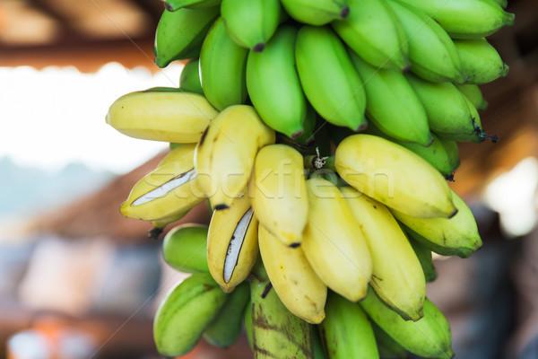 close up of green bananas at street market Stock photo © dolgachov