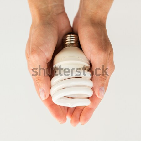 close up of hands holding energy saving lightbulb Stock photo © dolgachov
