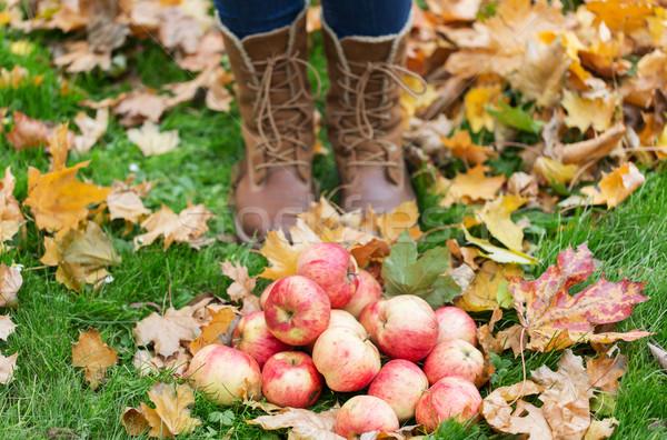 女性 フィート ブーツ リンゴ 紅葉 ストックフォト © dolgachov
