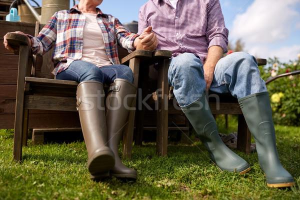 Boldog idős pár nyár farm gazdálkodás kertészkedés Stock fotó © dolgachov
