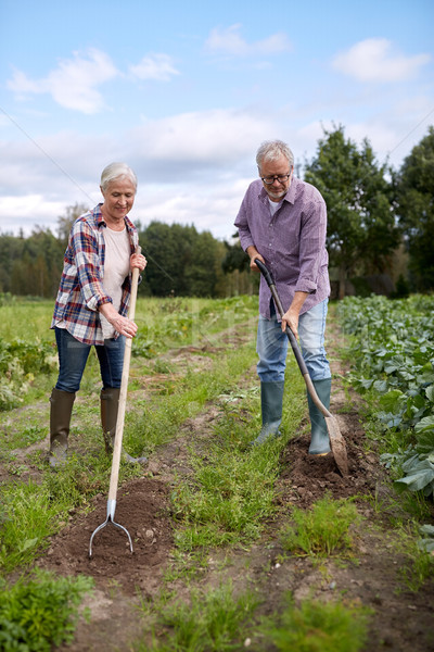 senior couple with shovels at garden or farm Stock photo © dolgachov