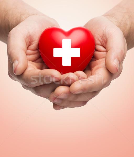 Masculino mãos vermelho coração branco Foto stock © dolgachov