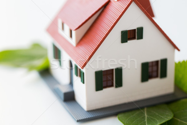 close up of house model and green leaves Stock photo © dolgachov