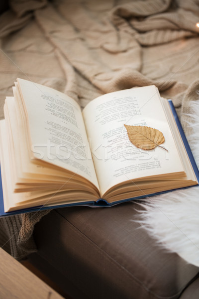 Livro outono folha página sofá casa Foto stock © dolgachov