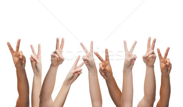 Ludzi ręce gest części ciała kobieta Zdjęcia stock © dolgachov