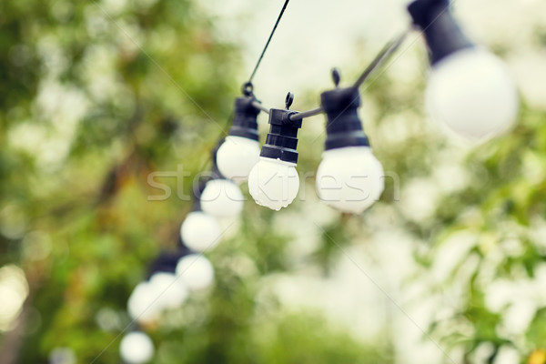 close up of bulb garland hanging in rainy garden Stock photo © dolgachov