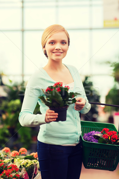 happy woman with shopping basket choosing flowers Stock photo © dolgachov