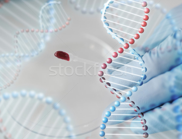 close up of scientist with blood sample in lab Stock photo © dolgachov