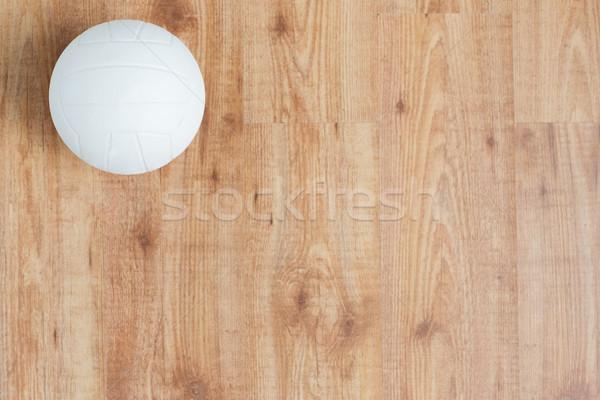 Siatkówka piłka sportu fitness Zdjęcia stock © dolgachov