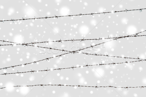 Stock photo: barb wire fence over gray sky and snow