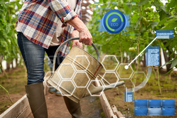 senior woman with watering can at farm greenhouse Stock photo © dolgachov