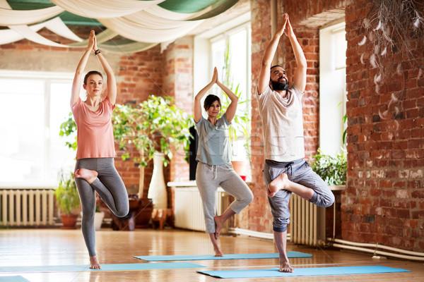 group of people doing yoga tree pose at studio Stock photo © dolgachov