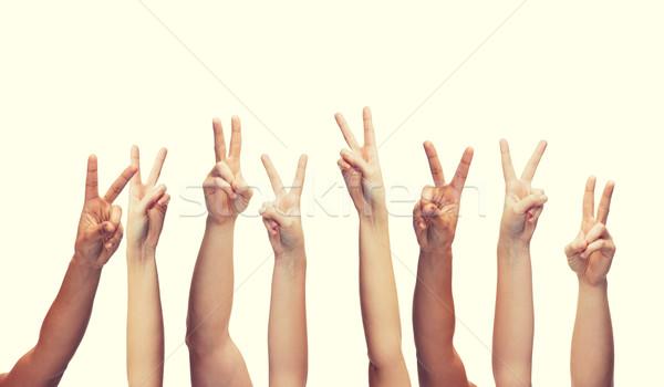 Humanos manos gesto partes del cuerpo mujer Foto stock © dolgachov
