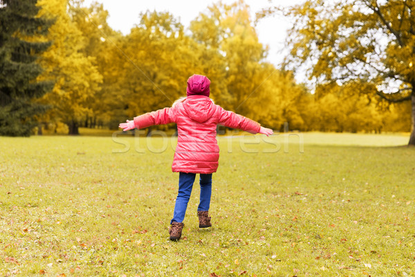 happy little girl having fun in autumn park Stock photo © dolgachov