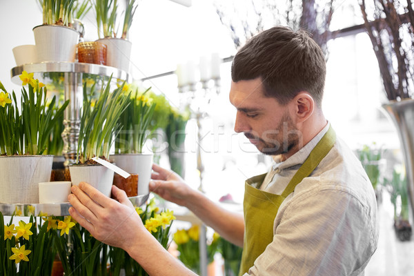 Virágárus férfi virágok virágüzlet emberek üzlet Stock fotó © dolgachov