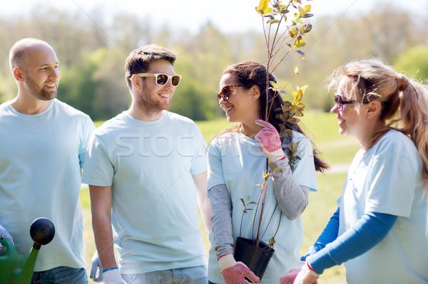 Csoport önkéntesek fa palánta park önkéntesség Stock fotó © dolgachov