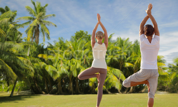 Stockfoto: Gelukkig · paar · yoga · strand · fitness