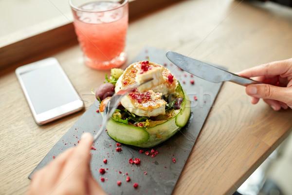 女性 食べ ヤギ乳チーズ サラダ レストランの食べ物 料理の ストックフォト © dolgachov