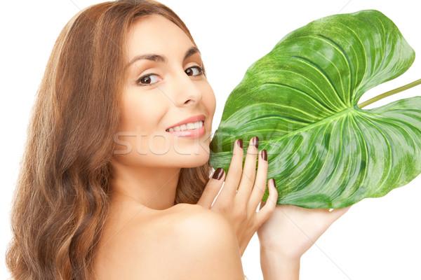 Stock fotó: Nő · zöld · levél · kép · fehér · boldog · egészség