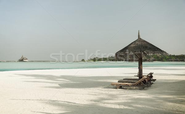 Deniz Maldivler plaj seyahat turizm tatil Stok fotoğraf © dolgachov