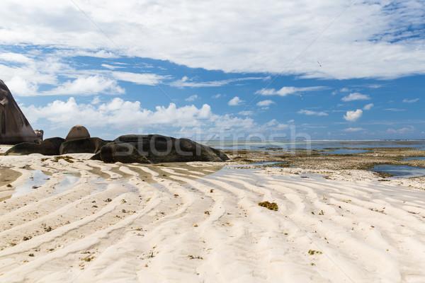 rocks on seychelles island beach in indian ocean Stock photo © dolgachov