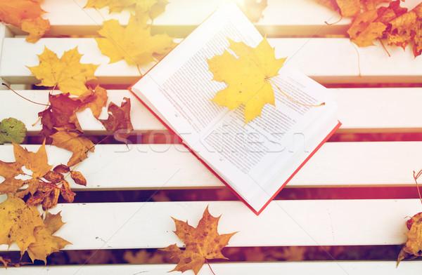 open book on bench in autumn park Stock photo © dolgachov