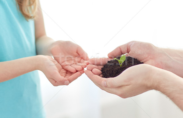 Stock photo: close up of father and girl hands holding sprout