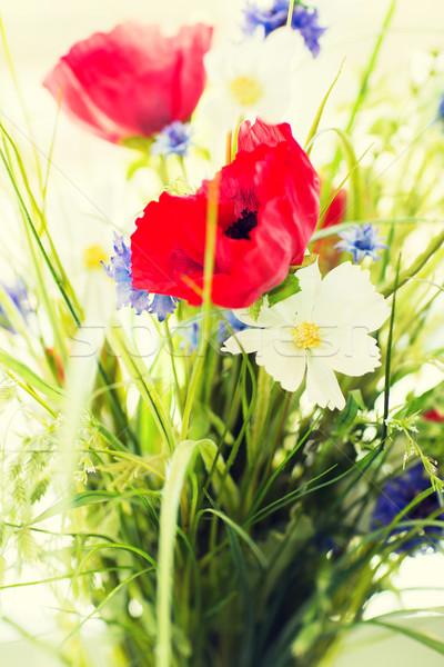 beautiful wildflowers bunch Stock photo © dolgachov