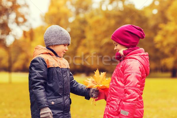 Photo stock: Peu · garçon · automne · érable · laisse · fille