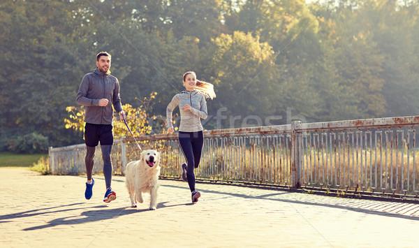 Szczęśliwy para psa uruchomiony odkryty fitness Zdjęcia stock © dolgachov