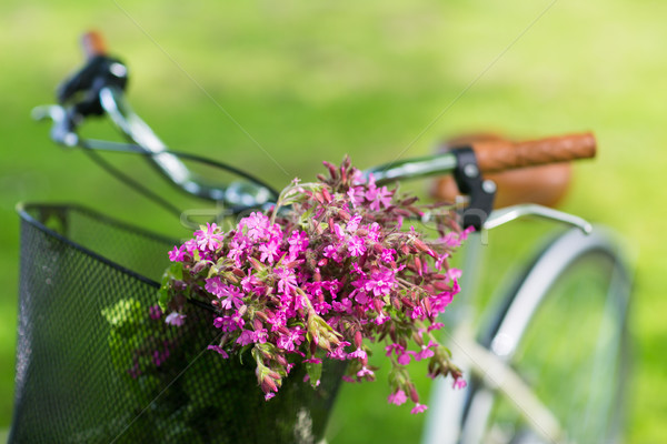 close up of fixie bicycle with flowers in basket Stock photo © dolgachov