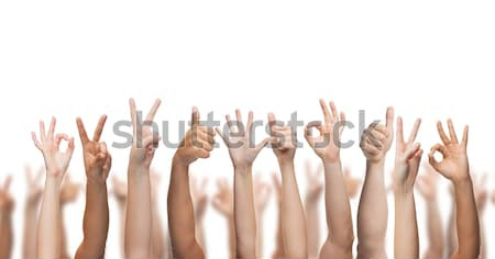 Umani mani gesto parti del corpo donna Foto d'archivio © dolgachov