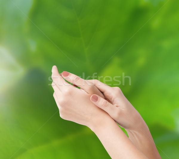 female soft skin hands Stock photo © dolgachov