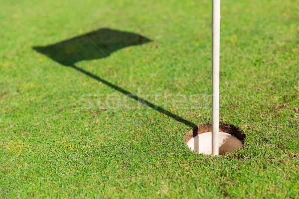 close up of flag mark in hole on golf field Stock photo © dolgachov