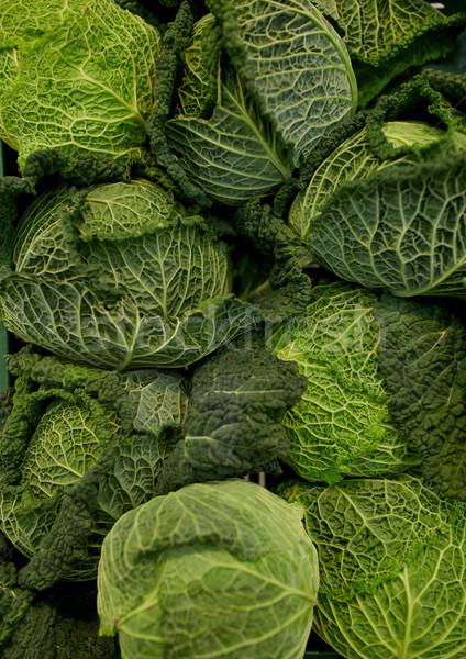 close up of savoy cabbages Stock photo © dolgachov